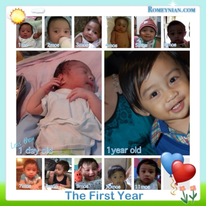 The First Year